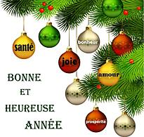 Bonne-annee 2015