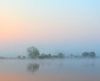 Brouillard Hiver Matin