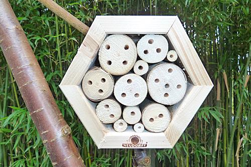 Abri abeilles maconnes Neudorff Mioulane MAP P1070091