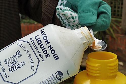 Savon noir insecticide Mioulane P1070295