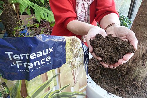Terreau rempotage Mioulane Photogreen P1070183