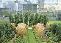 Parc Paris Citroen MAP YMO GIP0105569