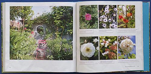 Cabanes jardin P1070467