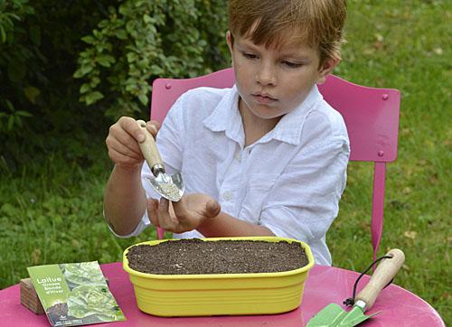 Semis salade enfant MAP PAMI 140808801