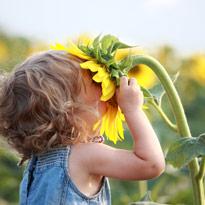 Enfant Fleur Tournesol