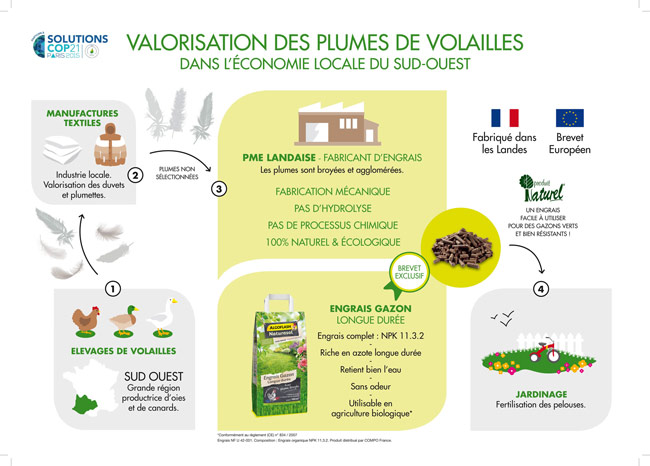 Algoflash Naturasol Infographie
