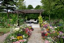 Jardin Multicolore Mioulane MAP NPM 850407070