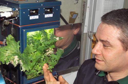 Cosmonaute korzun salade ISS Nasa