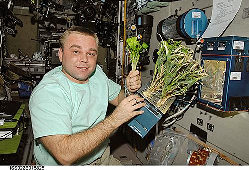 Cosmonaute suraev Salade ISS Nasa