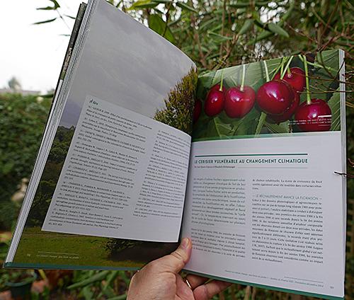 Dossier Jardins de France 3 Interieur 1