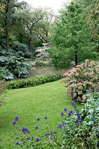 Jardin Pelouse Mioulane MAP NPM 850346151