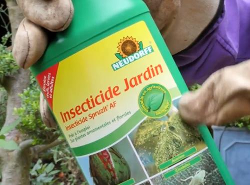 Insecticide Logo Agriculture Biologique NewsJardinTV