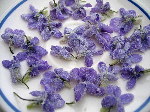 Violettes fleurs cristallisees DR7