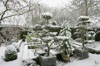 Jardin hiver neige Mioulane MAP NPM 850369027