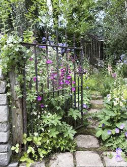 Portail Jardin Mioulane MAP NPM 719514071