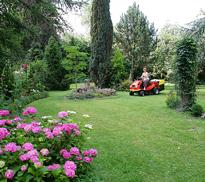 Tonte Pelouse Jardin Mioulane NewsJardinTV NPM 080116216