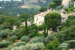 Jardin mediterraneen Mioulane NewsJardinTV P1010732