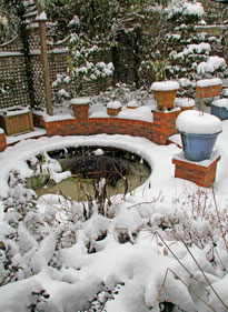 Jardin Neige Hiver Mioulane NewsJardinTV NPM 2607524314