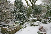 Jardin Neige Hiver Mioulane NewsJardinTV NPM 2607524326