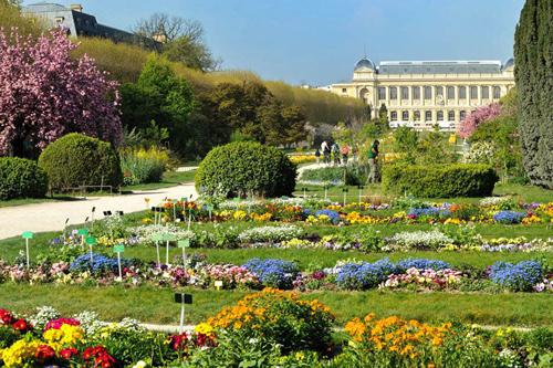 jardin plantes Paris Mnhn