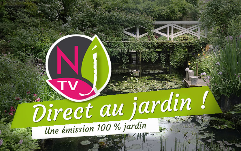 Direct au jardin