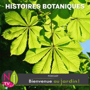 Histoires botaniques et jardinières